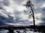 Natur & Landskap av Magnus Pohjanen
